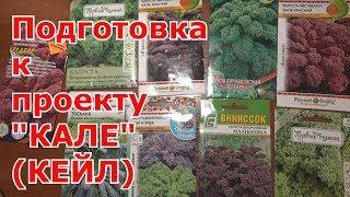 """Мой новый проект """"КАЛЕ"""". Подготовка к выращиванию листовой капусты КЕЙЛ"""