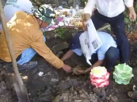 Tìm mộ tại ấp Phú Long Bình, xã Phú Hựu, Nha Mân