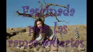 CocoRosie-Roots of my hair (subtitulada en español)