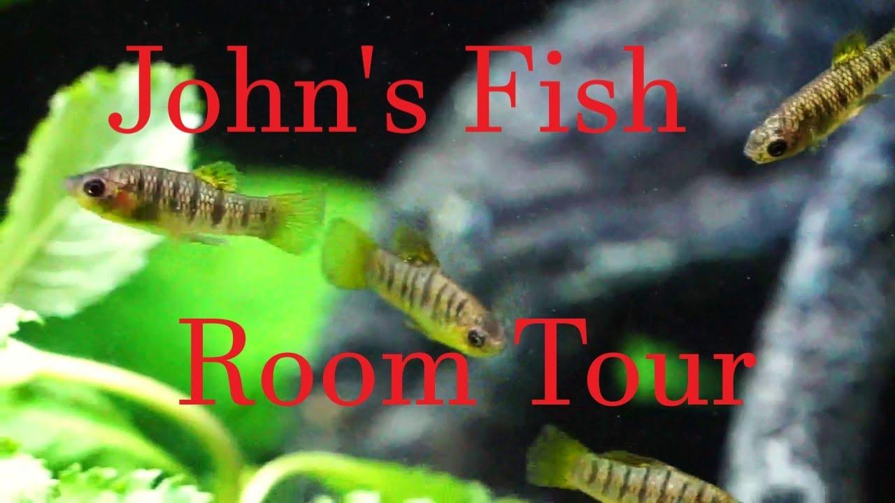 John's Old Fish Room Tour