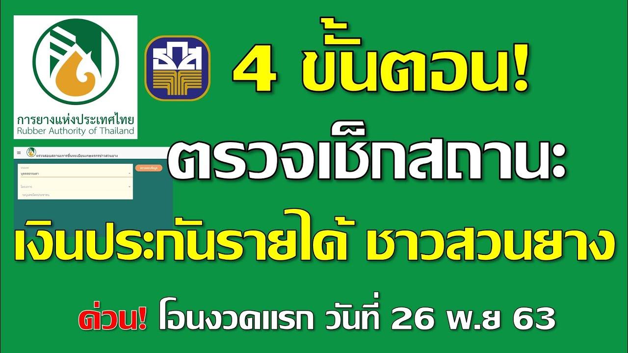 4 ขั้นตอน ตรวจเช็กสถานะเงินประกันรายได้ ชาวสวน เงินเข้างวดแรกในวันที่ 26 พฤศจิกายน นี้ EP.7