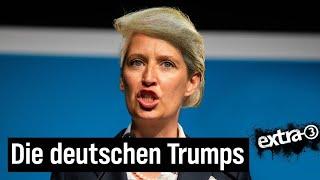 AfD – der Pannenwahlkampf der Populisten