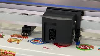 Professional Print & Cut Solutions
