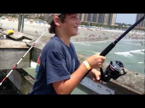 Monster tiger shark bob hall pier doovi for Shark fishing myrtle beach