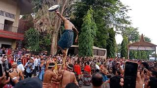 TARIAN TRADISIONAL MAUMERE - GONG WANING -