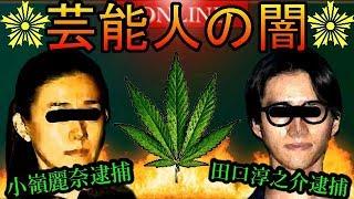 【田口淳之介逮捕】麻薬取締部の長期捜査により逮捕されていたことが判明!!【密告者】
