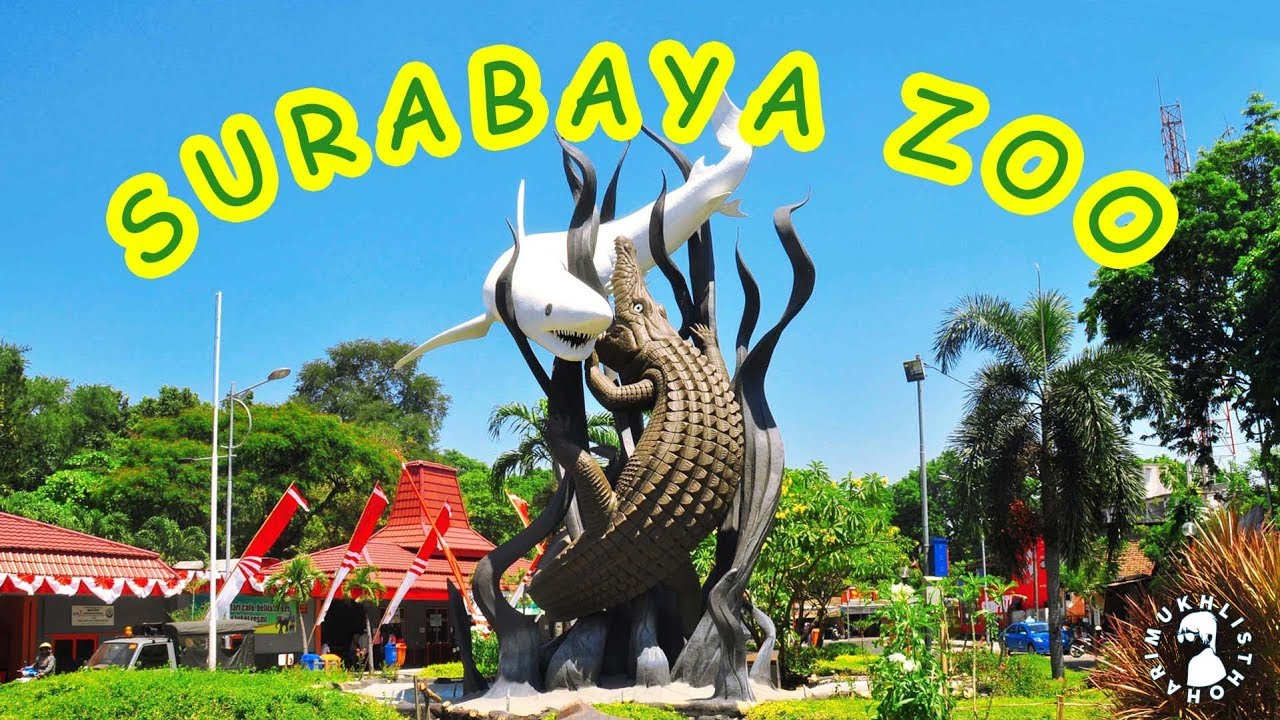 Indonesia Kebun Binatang Surabaya Kbs September 2018