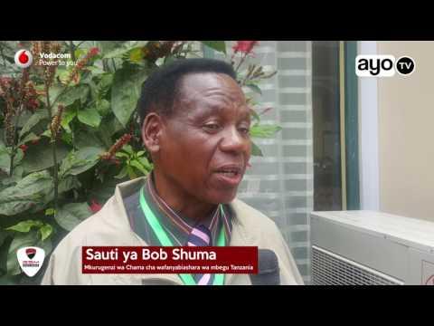Kimetajwa kiwango cha mbegu za maharage kinachohitajika Tanzania