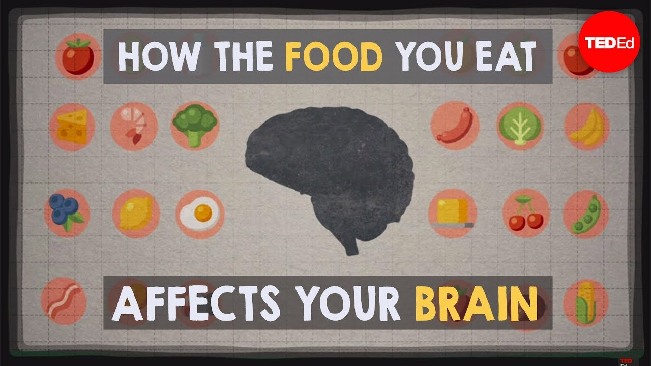 how the food you eat affects your brain mia nacamulli [ 1280 x 720 Pixel ]