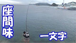 かがたくと釣り行くと釣れない説!?【変神と行く座間味島遠征】#4 thumbnail