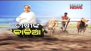 "Janata Darbaar: Odisha Govt Announce ""KALIA"" Scheme To Provide Financial Aid To farmers"