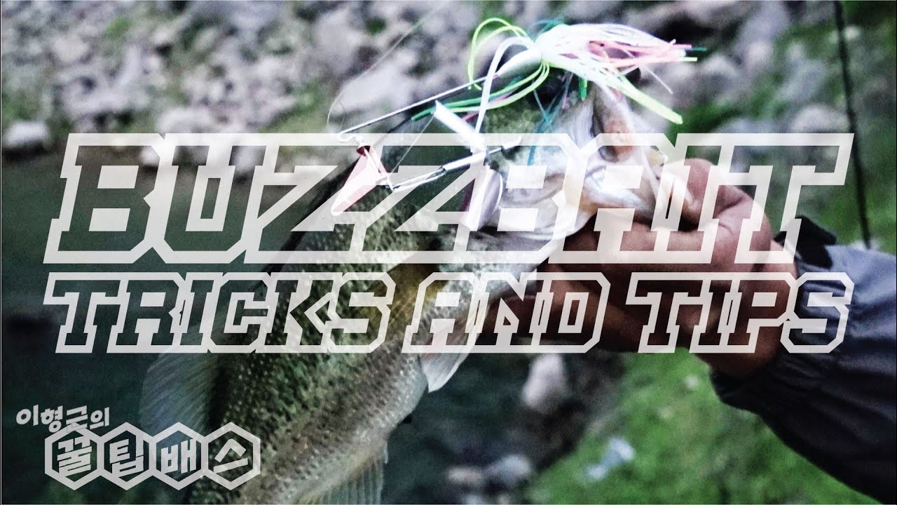 배스낚시 중급자를 위한 버즈베이트 운용&튜닝 꿀팁 Bass Fishing Buzzbait