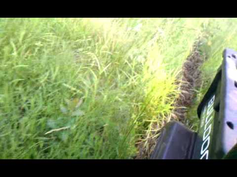 Kevins Bulldog in the mud