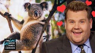 James Corden Has a Thing for the Hot Koala