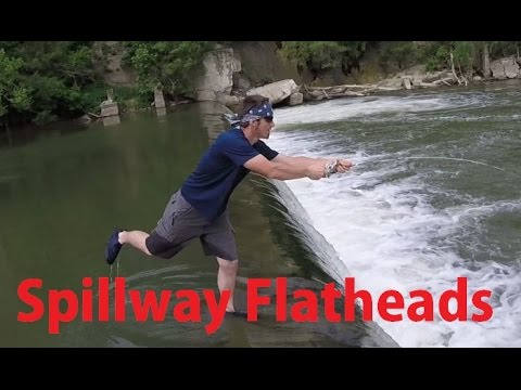 Dam Flathead Fishing 2015 - River Spillway Catfish Gamakatsu