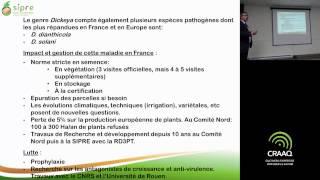 Gestion, recherche et développement concernant les ravageurs de la pomme de terre - partie 3