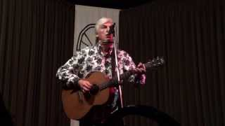 Watch Robyn Hitchcock Man With A Womans Shadow video