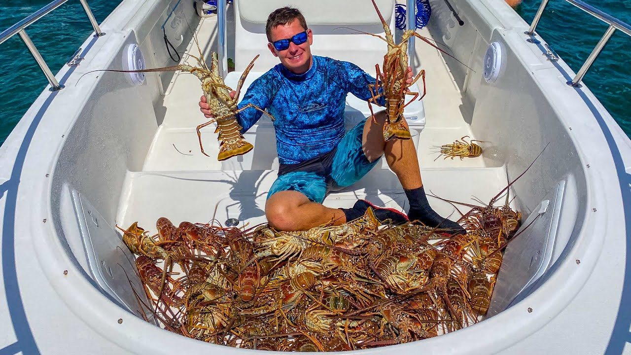 SPINY Lobster! Catch Clean Cook- 2020 Florida Lobster Mini Season