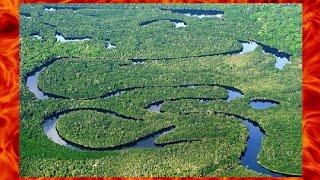 Супер рыбалка в водах Амазонки. Подборка лучших моментов!!!