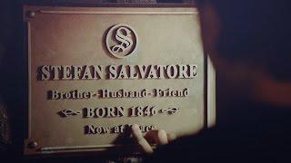 "Stefan Salvatore   ""Goodbye brother"" [8x16]"