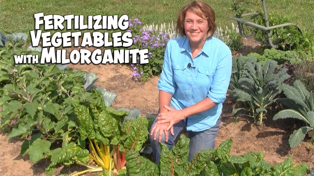 Fertilizing Vegetables with Milorganite - YouTube