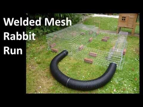 Building a Wire Mesh Rabbit Run