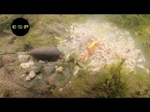 ESP PVA Mesh - 'Cold Water Classics'