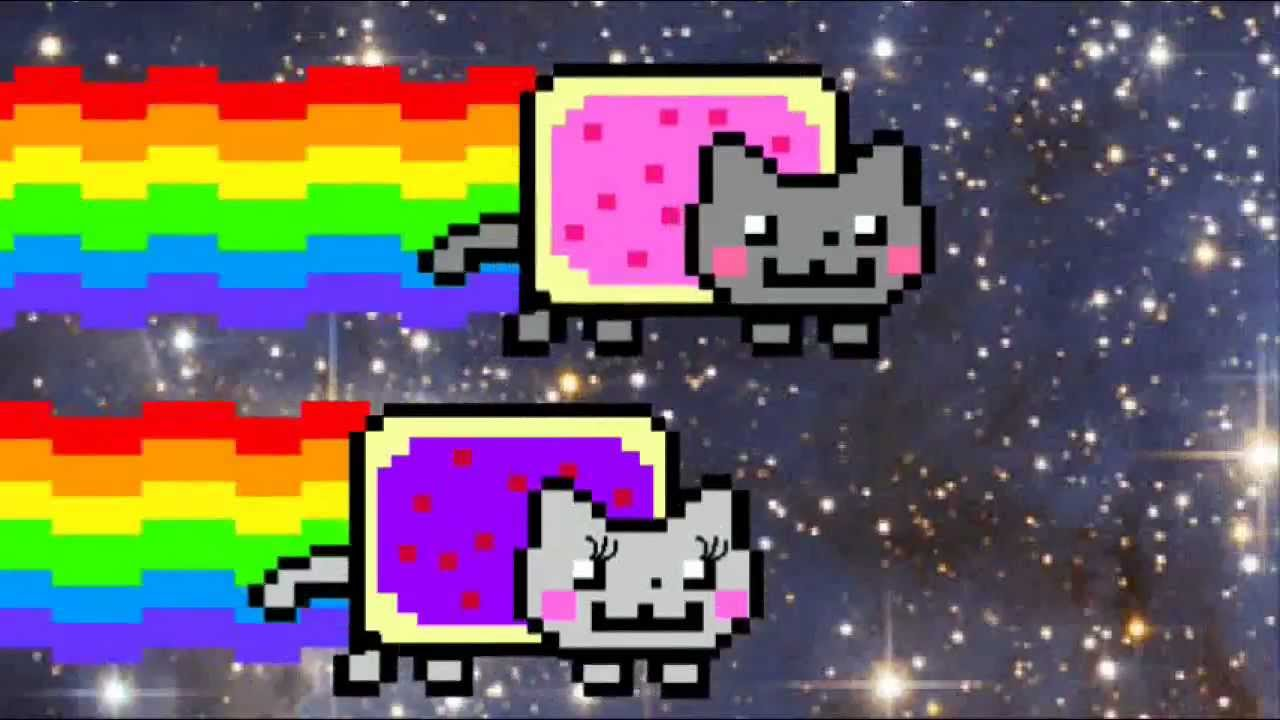 Cat Nyans  Hours