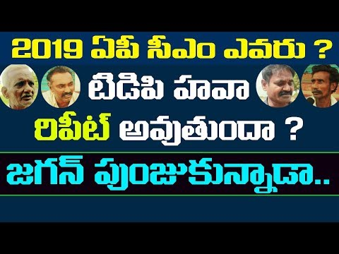Who is Andhra Pradesh Next Cm in 2019 | Public Opinion On Ap Politics | Public Naadi | Public Pulse