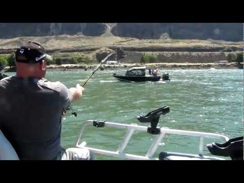 HUGE Sturgeon Caught From Columbia River at Rufus, Oregon (8/11/12)