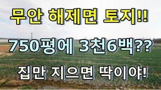 [부동산경매물건] 전남…