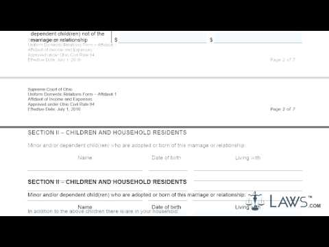 Ohio Affidavit Of Income And Expenses.mp4