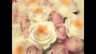 video background hd flower 3d freedownload