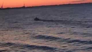 Мотор Ямаха 15 лз пробую в море