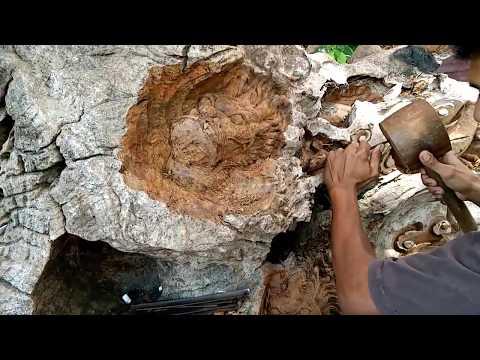 Amazing. Master Ukir Relief 9 naga di akar kayu jati. Jepara Kota Ukir