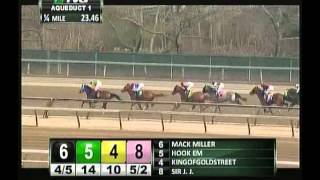 Sir J.J. - 2013 Aqueduct Maiden Claiming Race - Fifth Place Finish