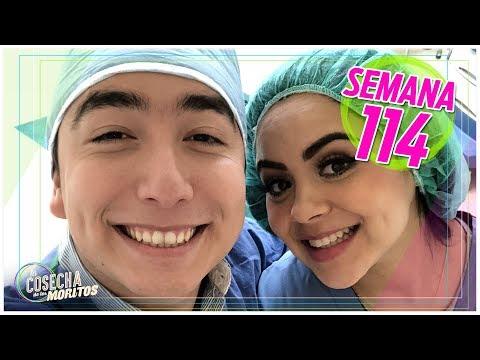 SEMANA 114 / CONOCIENDO LA MATERNIDAD