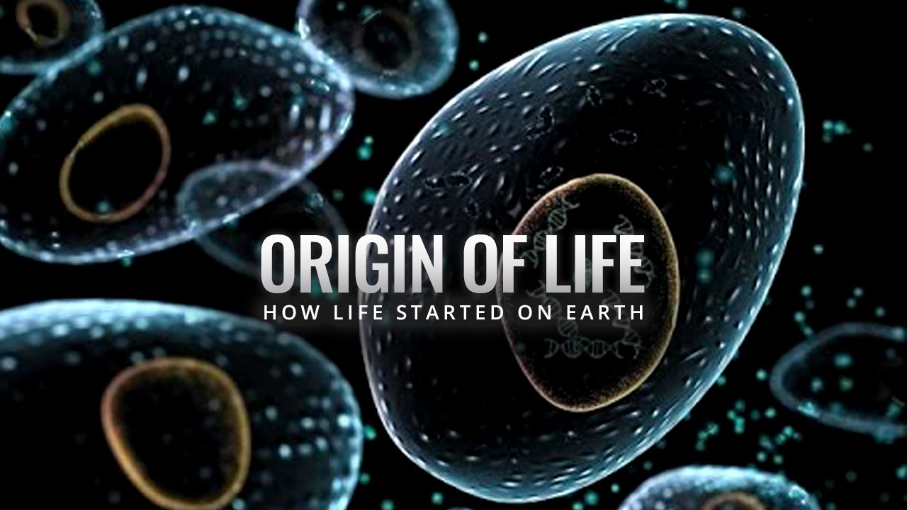 Origin of life on earth essay