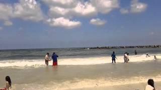 شاطئ النخيل - العجمي الأسكندريه 2014