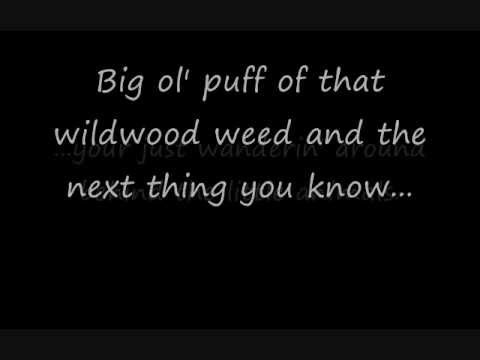 Wildwood Weed (Jim Stafford) w/ lyrics