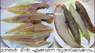 മാന്തൾ  മീൻ എളുപ്പത്തിൽ എങ്ങനെ വൃത്തിയാക്കാം How to clean Sole Fish