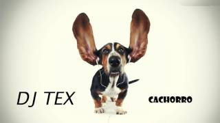 BASE DE FUNK - BEAT FUNK - FUNK INSTRUMENTAL  ( DJ TEX - CACHORRO )