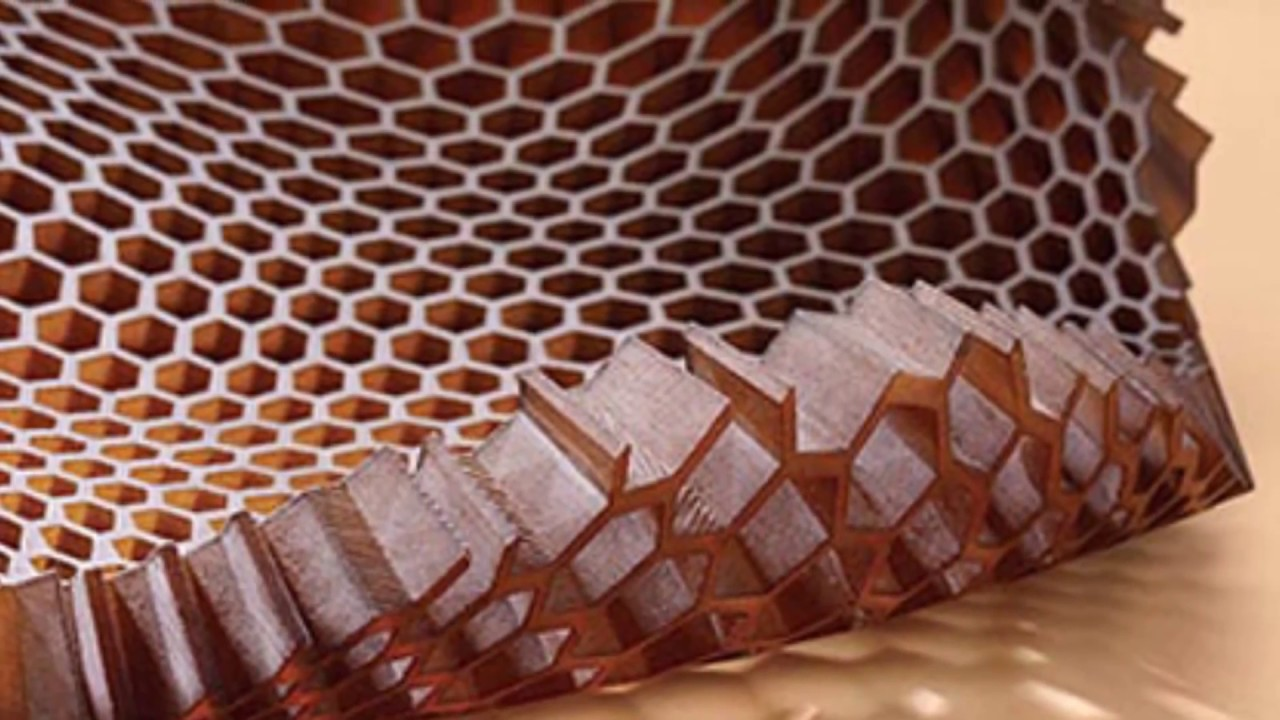 Creepy Trypophobia By Medical Jeopardy