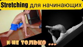Развитие гибкости тела за пять дней   видео курс для новичков скачать