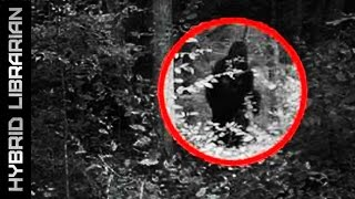 Repeat youtube video 10 MYTHICAL Creatures That Turned Out To Be REAL