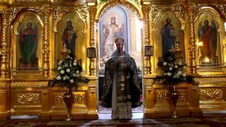 Свет Христов просвещает всех.(Свет Христов просвещает всех. Свято-Ильинский одесский мужской монастырь, архимандрит Виктор (Быков),Велик..., 2012-04-11T14:24:46.000Z)