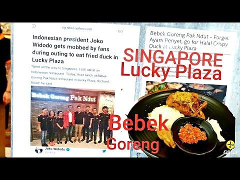 singapore-kuliner-halal-bebek-goreng-lucky-plaza-pak-jokowi-pernah-ke-sini-loh//singapore-vlog