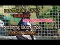 Masteran Kacer  Manjur Suara Keras Jeda Untuk Pendorong Kacer Gacor Lomba Rumahan  Mp3 - Mp4 Download