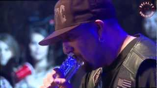 "BREAL.TV | Cypress Hill ""Hits From The Bong"" - Live @ The Smokeout 2012"