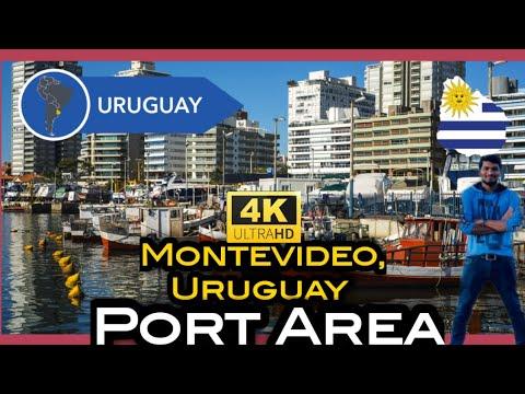 Uruguay Montevideo Port Area|Uruguay Telugu Vlog|#Uruguay#Montevideo |Gopi's Facts & Vlogs